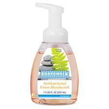 Fruity Foaming Antibacterial Hand Soap (Set of 6)