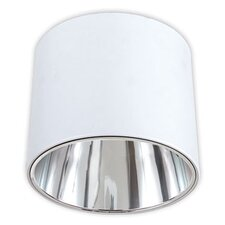 2 Light Flush Mount - Glass