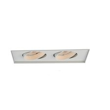 Two Light Recessed Trimless Multi Spot for MT-230HS in White