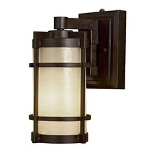 Andrita Court 1 Light Outdoor Wall Lantern