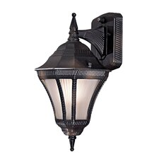 Segovia Outdoor Wall Lantern