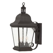 Glen Allen Outdoor Wall Lantern