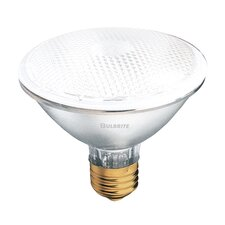 50W PAR30 Frosted Halogen Bulb in Frost