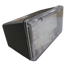 1 Light Outdoor Floodlight