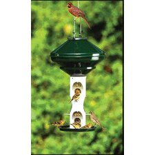 Avian Series Bird Feeder in Green