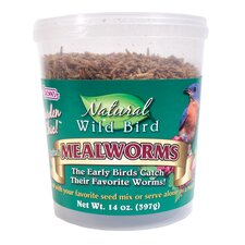 Natural Dried Mealworms Wild Bird Food
