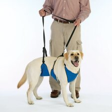 Dog Lift and Leash