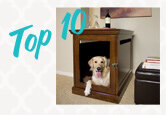 Top 10 Dog Crates & Kennels